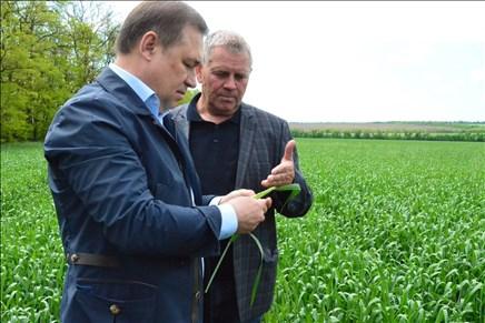 ВПермском крае яровой сев изготовлен на89,5%