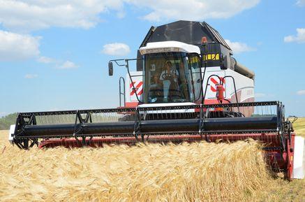 Курскими аграриями собран 1-й млн тонн зерна