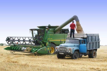 Ростовская область – в числе лидеров в России по валовым сборам  зерна