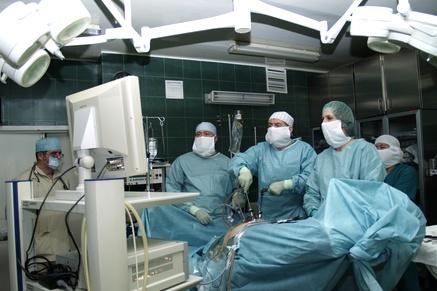 Ветеринарная клиника реутов ул. октября 36